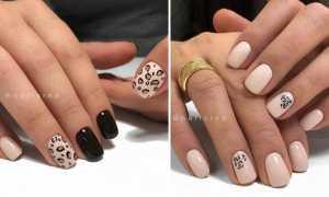Леопардовый дизайн маникюра сливовый: маникюр, фото дизайна ногтей