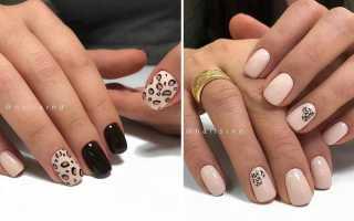 Благородный леопардовый принт на длинных ногтях: маникюр, фото дизайна ногтей