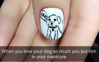 Маникюр с собакой: маникюр, фото дизайна ногтей