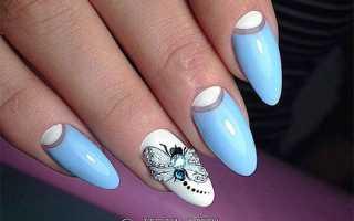 Градиент с рисунком стрекозы: маникюр, фото дизайна ногтей