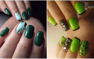 Маникюр зеленый с кактусом: маникюр, фото дизайна ногтей