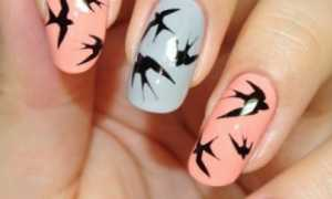 Маникюр с птицами колибри: маникюр, фото дизайна ногтей