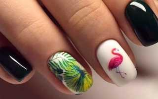 Маникюр модный с фламинго: маникюр, фото дизайна ногтей