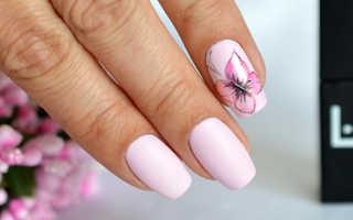 Бабочки на ногтях: идеи дизайна и пошаговая фото инструкция